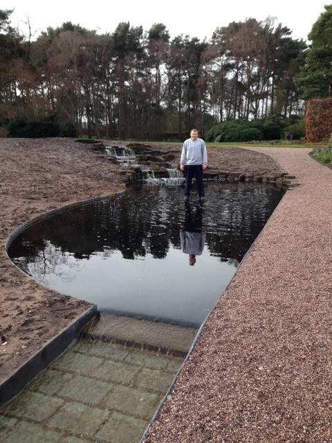 Part of a multi-level pond system in Cheshire